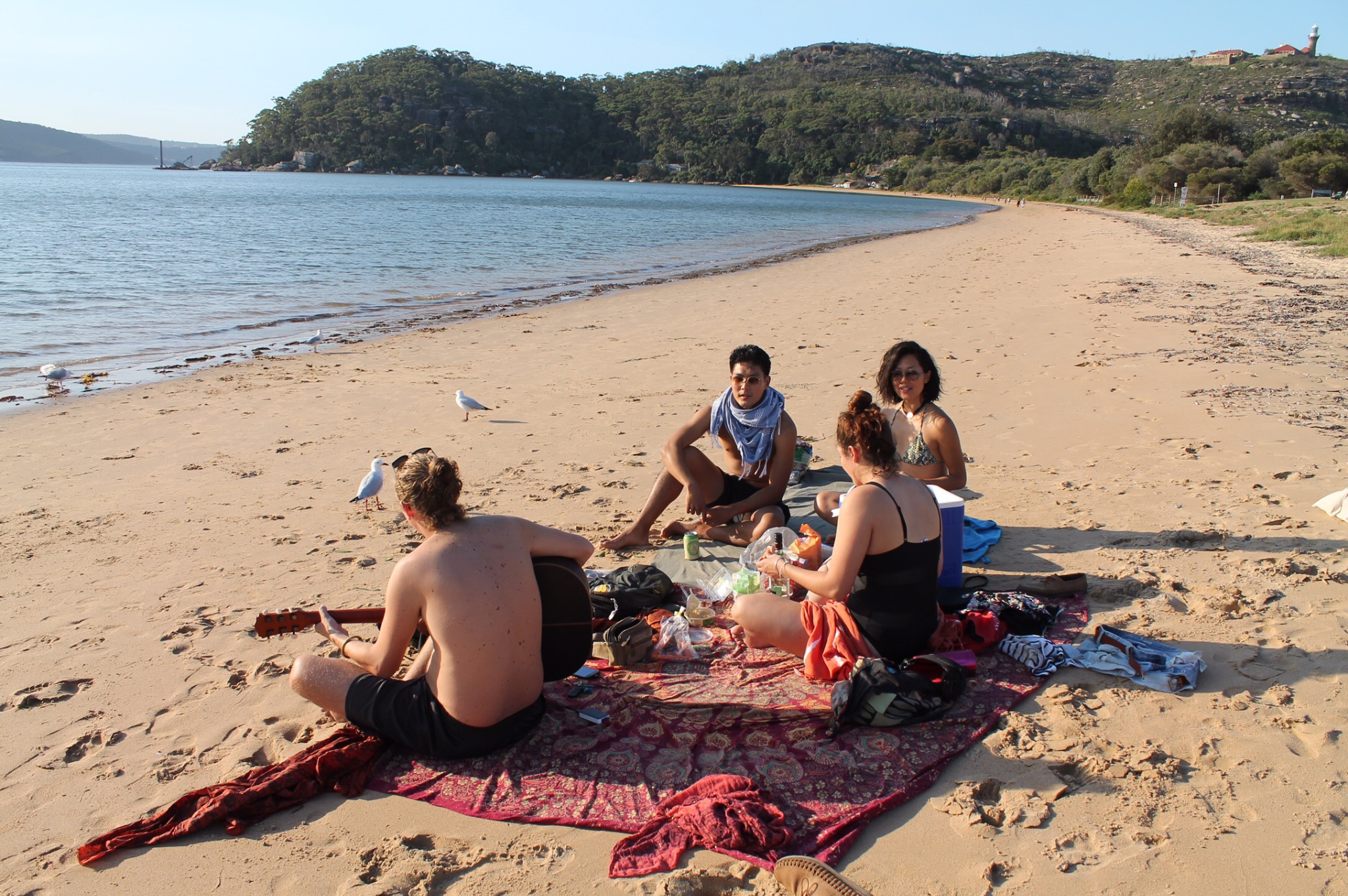 Picnic at Palm Beach, NSW.